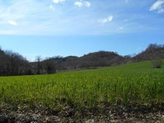 Foto - Terreno agricolo in Vendita a Guardea