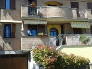 Foto - Trilocale nuovo, piano terra, Castelvetro di Modena