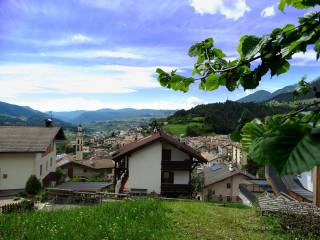 Foto - Terreno edificabile residenziale a Tesero