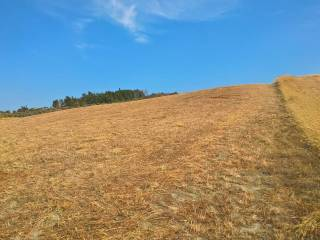 Foto - Terreno agricolo in Vendita a Catanzaro