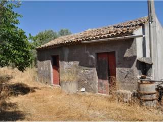 Foto - Terreno agricolo in Vendita a Paternò