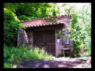 Foto - Terreno agricolo in Vendita a Carbognano