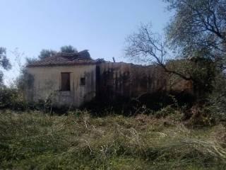 Foto - Terreno agricolo in Vendita a Cabras