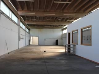 Immobile Affitto Castelverde