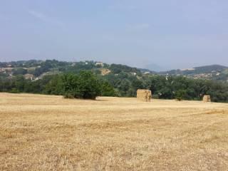 Foto - Terreno agricolo in Vendita a Benevento