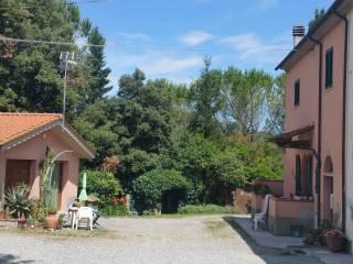 Foto - Rustico / Casale via Poggiarellini 7, Terricciola