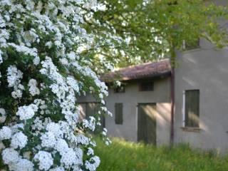 Foto - Rustico / Casale via Guglielmo Marconi, Santa Fosca, Roncade