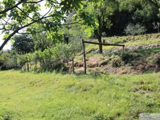 Foto - Terreno agricolo in Vendita a Provaglio d'Iseo