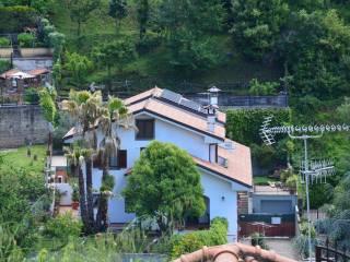Foto - Villa, ottimo stato, 320 mq, Palestrina