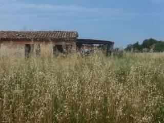 Foto - Rustico / Casale via Italia, Scorcelletti, Castelbellino