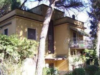Foto - Appartamento all'asta, Ariccia