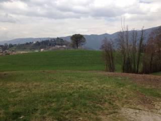 Foto - Terreno edificabile residenziale a Mussolente