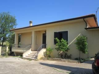 Foto - Villa, buono stato, 90 mq, Monte San Giovanni Campano