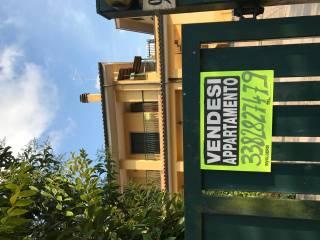 Foto - Appartamento via Colle Girello, Palestrina