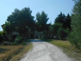 Foto - Rustico / Casale, buono stato, 248 mq, Fornace, Belvedere Ostrense