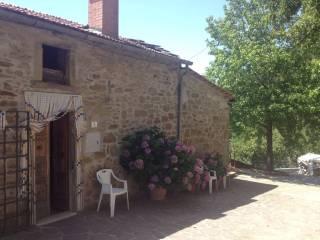 Foto - Rustico / Casale Strada Provinciale Umbro Cortonese, Toppello, Cortona