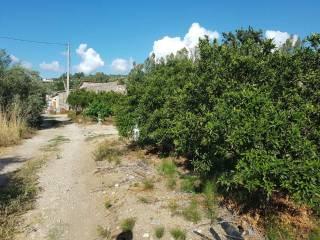Foto - Terreno agricolo in Vendita a Misilmeri