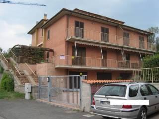 Foto - Appartamento via del Poggio, Bolgheri, Castagneto Carducci