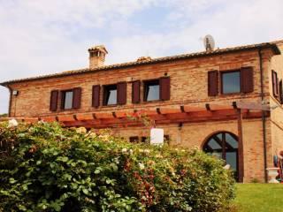 Foto - Rustico / Casale via Selve Sant'Antonio, Loreto