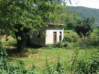 Foto - Terreno agricolo in Vendita a Carpinone
