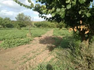 Foto - Terreno agricolo in Vendita a Sant'Anastasia