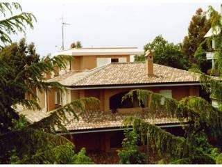Foto - Appartamento via Rieti, Agorà, Latina