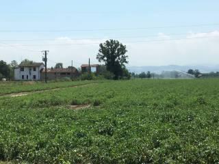 Foto - Rustico / Casale, da ristrutturare, 150 mq, Agazzino, Borgonovo Val Tidone