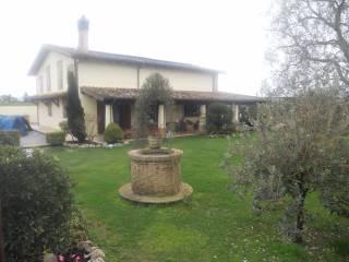 Foto - Villa 345 mq, Osteria Nuova, Roma