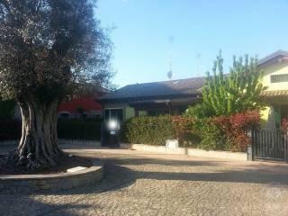 Foto - Appartamento all'asta via Canalazzo, 25-B, Casalgrande