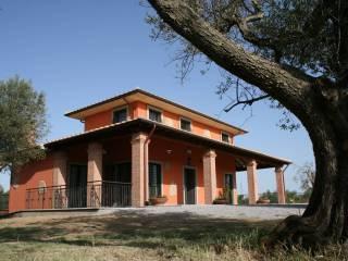 Immobile Vendita Montefiascone