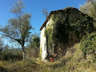 Foto - Rustico / Casale, da ristrutturare, 44 mq, Apricale