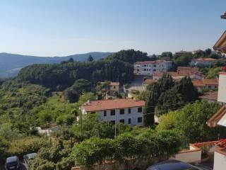 Foto - Appartamento via Sgarallino, Nibbiaia, Rosignano Marittimo