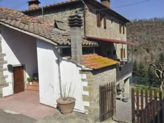 Foto - Rustico / Casale Cavolini 37, Castel San Niccolo'