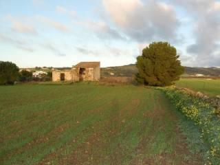 Foto - Vendita Rustico / Casale buono stato, Carloforte, Sulcis