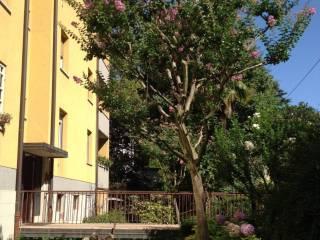 Foto - Appartamento via degli Scalini 5-4, Colli, Bologna