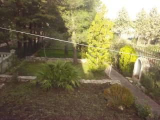 Foto - Villa oasi santa maria, Cassano Delle Murge