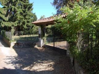 Foto - Villa via delle Orchidee, Rocca Priora
