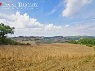 Foto - Terreno agricolo in Vendita a Pienza