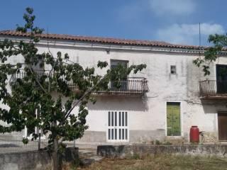 Photo - Detached house via Contrada Pratelle, Raviscanina