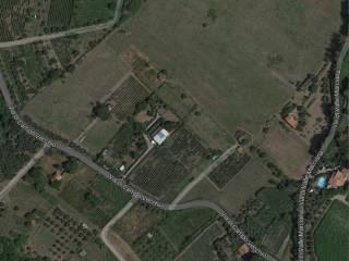 Foto - Terreno agricolo in Vendita a Grottaferrata