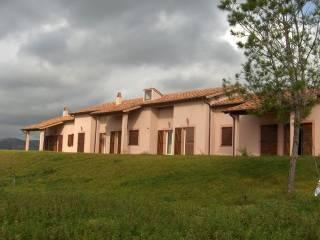 Foto - Rustico / Casale Località Cacciata Grande, Pescia Romana, Montalto Di Castro