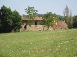 Foto - Rustico / Casale via Cimitero, San Miniato