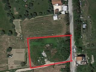 Foto - Terreno edificabile residenziale a Sant'Omero