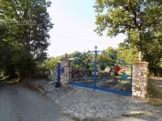 Foto - Rustico / Casale via San Rocco Contrada Maiale, Alvito