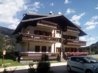 Foto - Appartamento frazione Caralte, Caralte, Perarolo di Cadore