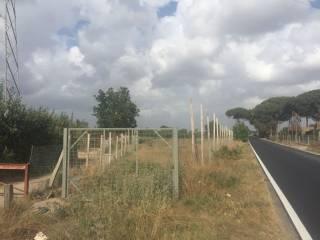 Foto - Terreno agricolo in Vendita a Giugliano in Campania