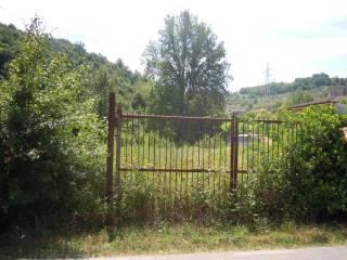 Foto - Terreno agricolo in Vendita a Lucca