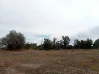 Foto - Terreno edificabile residenziale a Monterotondo