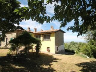 Foto - Rustico / Casale via L  Calligola 30, Monteombraro, Zocca
