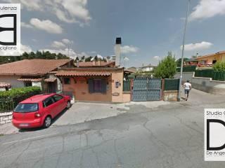 Foto - Trilocale all'asta, Rocca Priora